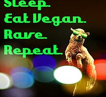 Vegan rave by thehippievegan