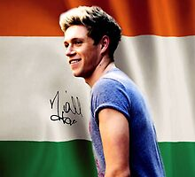 Niall Horan Ireland Flag One Direction Signature by meow-or-never10
