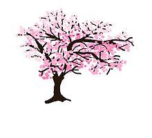 Cherrytree Blossom by pda1986
