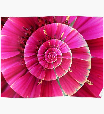 Flower Swirl Poster