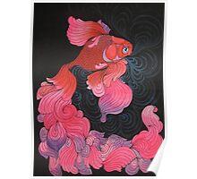 Pink Oranda  Poster