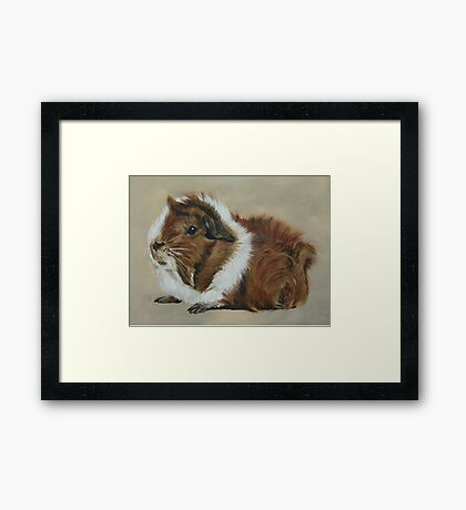 """Lucky"" Gorgeous Guinea Pig Framed Print"