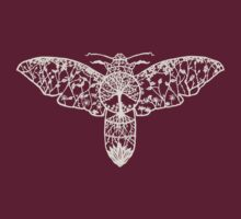 Hawk Moth Paper-Cut  by thethinks