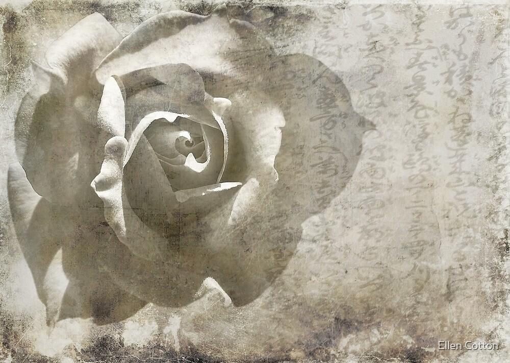Distant Dreams by Ellen Cotton
