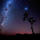 Milky Way and the Tree by Robert-Todd