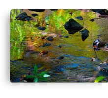 Colour streaming Canvas Print