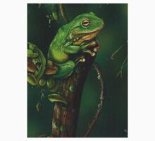 """ Green Tree Frog "" by owen  pointon"