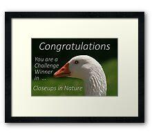 Banner Challenge  ...  Closeups in Nature Framed Print