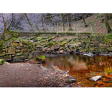 Whitfield Gill Photographic Print