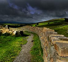 Hadrians Wall by English Landscape Prints