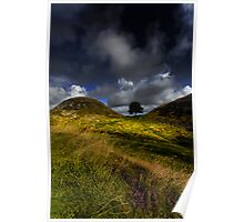 Sycamore Gap Poster