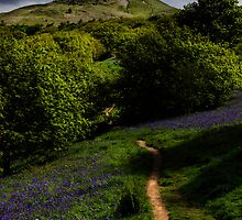 Roseberry Topping by English Landscape Prints