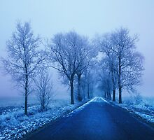 Blue Avenue, Berlin - Brandenburg by Angelika  Vogel