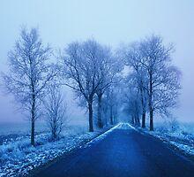 Blue Avenue, Berlin - Brandenburg by Angelika  Vogel