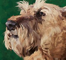Mabel the Irish terrier by Carl Conway