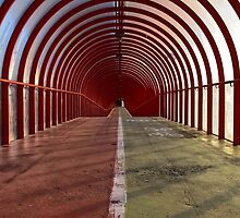 The Walkway - Colour by Stevie B