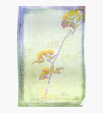 Whimsy Roses Poster