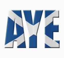 Scottish flag Vote Aye by stuwdamdorp