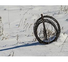 Barbed Wire Coil in Winter Photographic Print