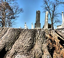 Graveyard Optical Illusion by artbybutterfly