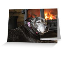 Ella the staffie  Greeting Card