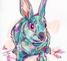 Rabbit drawing by Gwenn Seemel