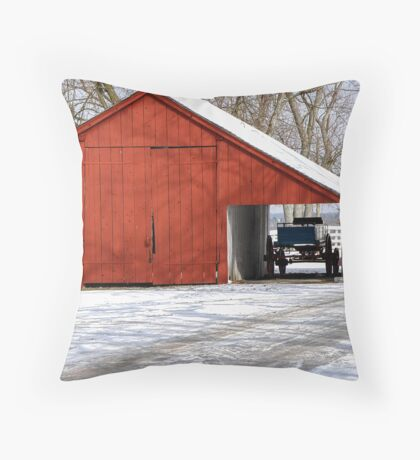 Scale House Throw Pillow