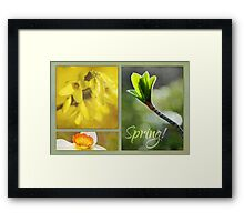 Tribute to Spring Framed Print