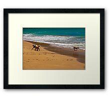 Friends At The Beach Framed Print