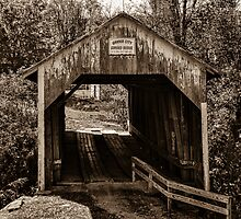 Grange City Covered Bridge - Sepia by Mary Carol Story