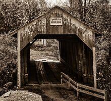 Grange City Covered Bridge - Sepia by Mary Carol Story