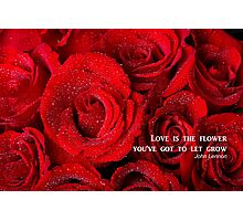 Love Is The Flower Photographic Print