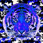 camouflage tiger on blue by sebmcnulty