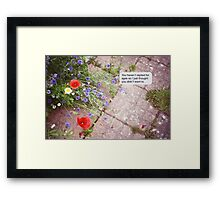 Summer texts Framed Print