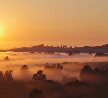 Winter Sunrise by Liz Worth
