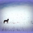 The Wild and the Free by TrendleEllwood