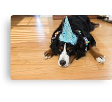 sometimes you just have to party Canvas Print