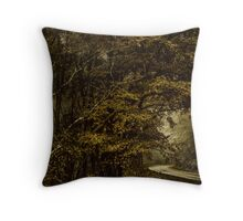 Winter Comes Home Throw Pillow