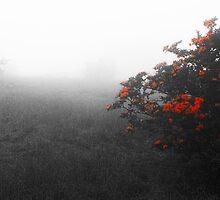 Cloudburst by rgahris