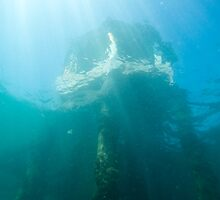 Structure from underwater by Jarrod Boord