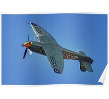 Sea Fury - Shoreham - 2013 Poster