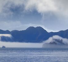 Fog on the Bay by David Denny