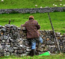 Dry Stone Walling by Stephen Smith