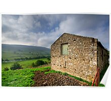 Early Morning Swaledale Poster