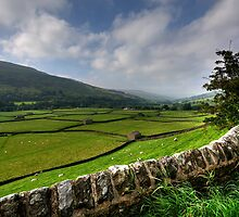 Swaledale At Its Best by Stephen Smith