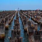 The Remains of Princes Pier Port Melbourne by Ronald Rockman