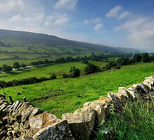 Early Morning Swaledale by Stephen Smith