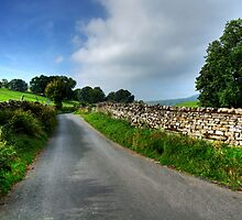 Swaledale Lanes by Stephen Smith