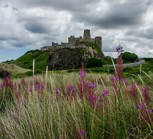 Bamburgh Castle by Stephen Smith