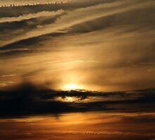When you gaze long into the sun by Steve Nahaj